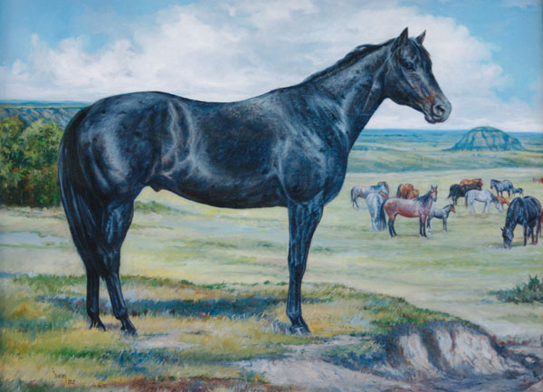 Blue Roan Horses For Sale by McKeag
